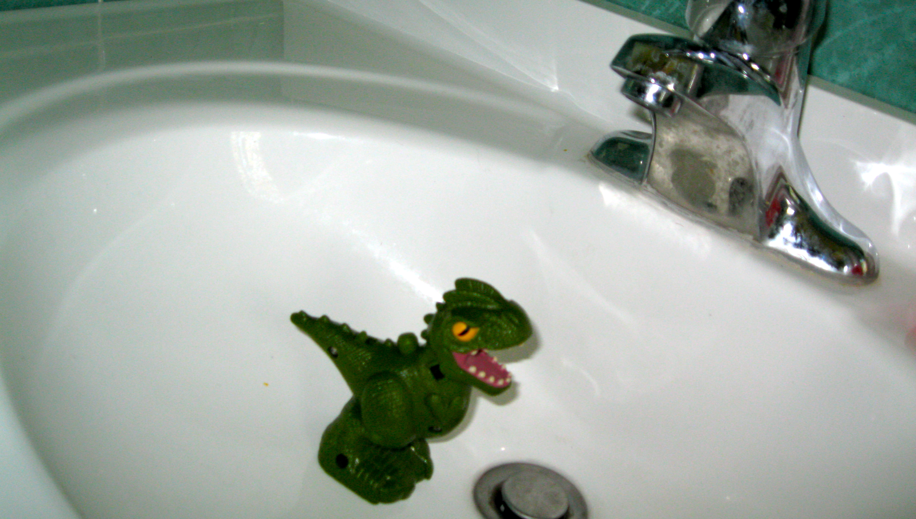 A Dinosaur in the Sink