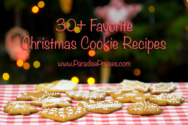 30+ Favorite Christmas Cookies