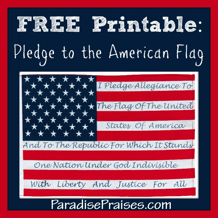 Pledge to American Flag