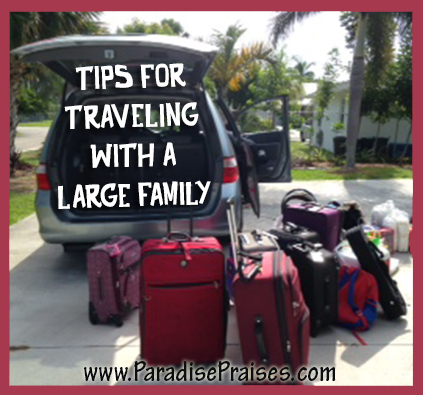 Tips for Travel with a large family www.ParadisePraises.com