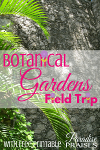 Why Botanical Gardens Field Trips are Important (with Free Printable) via ParadisePraises.com X'much Haltún Botanical Garden, Campeche, Mexico
