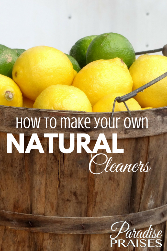 How to make your own natural cleaners, DIY recipes at ParadisePraises.com