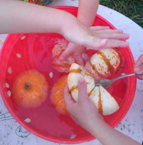 pumpkin Science for Preeschoolers