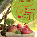 Favorite Essential Oil Diffuser Blends for Fall via ParadisePraises.com