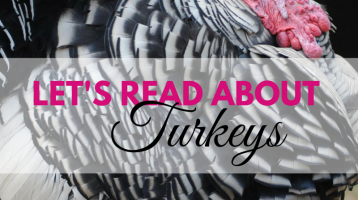 Let's Read About Turkeys (What to Read Link Up)