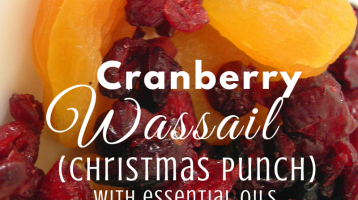 Cranberry Wassail (Christmas Punch) with Essential Oils