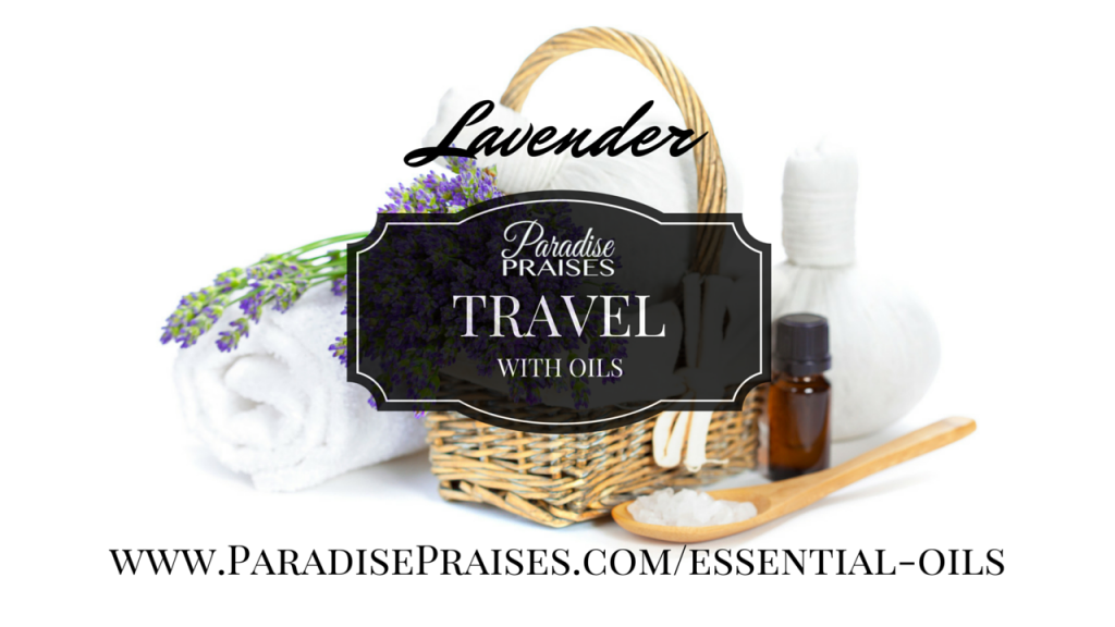 lavender Travel with Oils via ParadisePraises.com