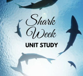 Shark Week Unit Study