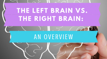 The Left Brain vs. The Right Brain: An Overview