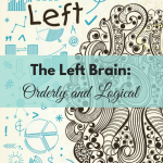 The Left Brain: Orderly and Logical