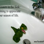 dinosaur in the sink paradisepraises.com