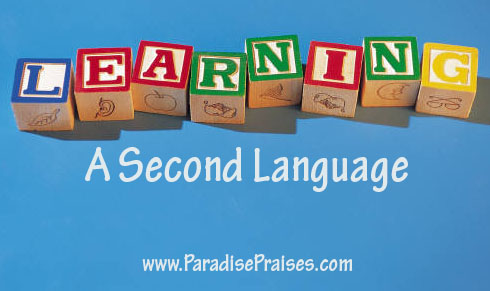 How to Learn a Second Language