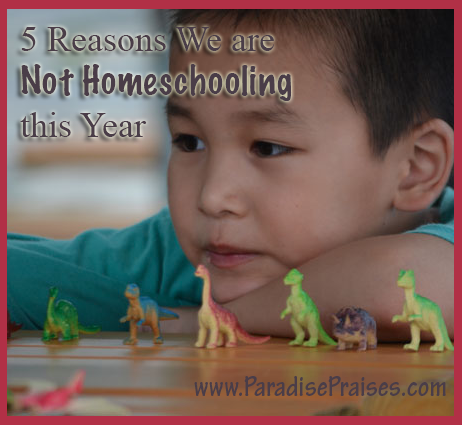 5 Reasons we are not homeschooling www.ParadisePraises.com