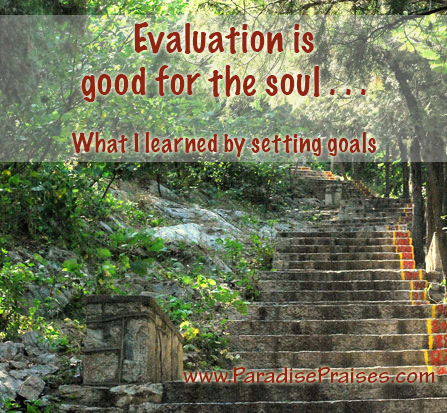 What I learned from setting goals   www.ParadisePraises.com