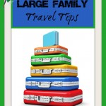 Large Family Travel Tips