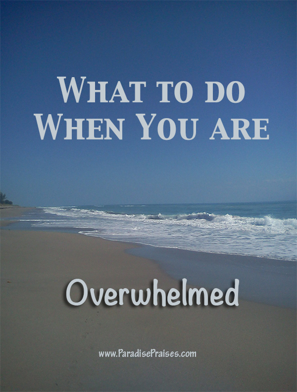 Encouragement for the overwhelmed heart www.ParadisePraises.com
