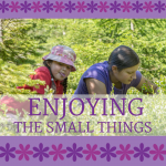 Enjoying the Small Things of Motherhood www.ParadisePraises.com