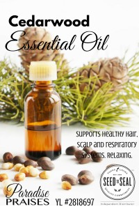 Cedarwood Essential Oil: 4 Ways to Apply Essential Oils aromatically via ParadisePraises.com