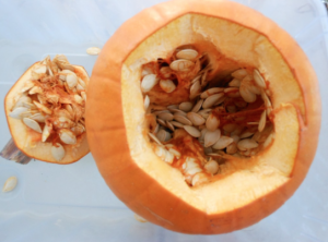 Science with Rotting Pumpkins