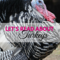 Turkey Reading list ages 3-14, via ParadisePriaises.com