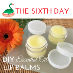 DIY Essential Oil Lip Balm recipes via ParadisePraises.com
