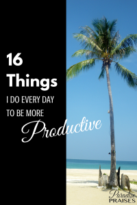 16 Things I do every day to be more productive via ParadisePraises.com