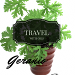 Travel with oils: Geranium oil via ParadisePraises.com