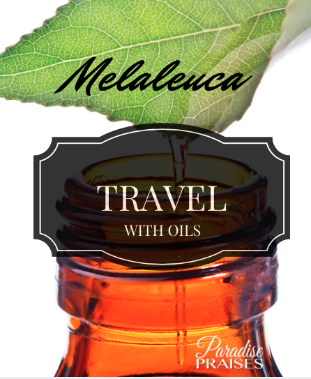 Travel with Oils: Melaleuca (Tea Tree) essential oil video series on ParadisePraises.com