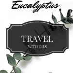 Travel with Oils: Eucalyptus, essential oil video series on ParadisePraises.com
