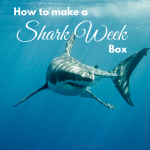 how to make a shark week box via paradisepraises.com