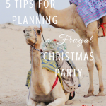 5 Tips for Planning a Frugal Christmal Party Paradisepraises.com