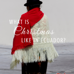 what is christmas like in ecuador? paradisepraises.com