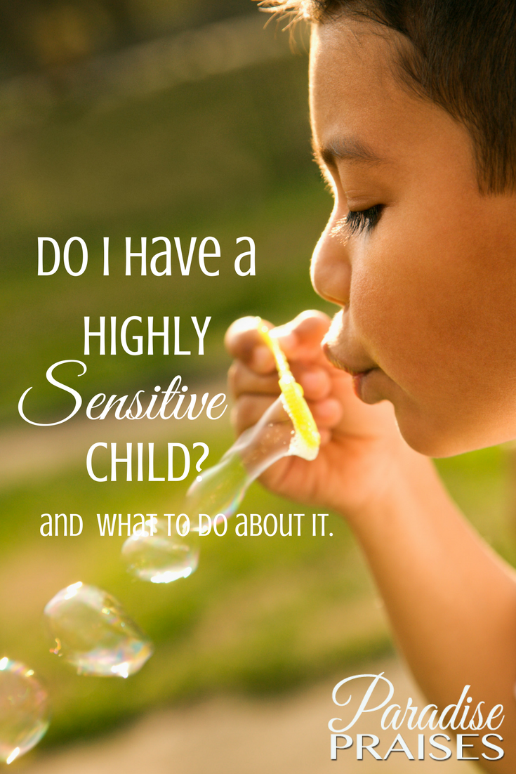 help for the highly sensitive child