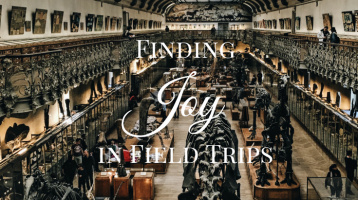 Finding Joy in Field Trips
